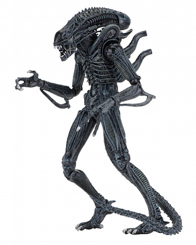 Фигурка Чужого — Neca Aliens Ultimate Alien Warrior Blue