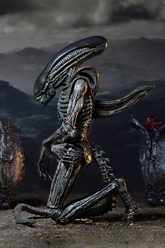 Фигурка Ксеноморфа — Neca Alien Covenant Xenomorph