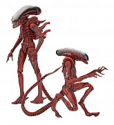 Набор фигурок Чужих — Neca Aliens Genocide 2-Pack Big Chap & Dog Alien
